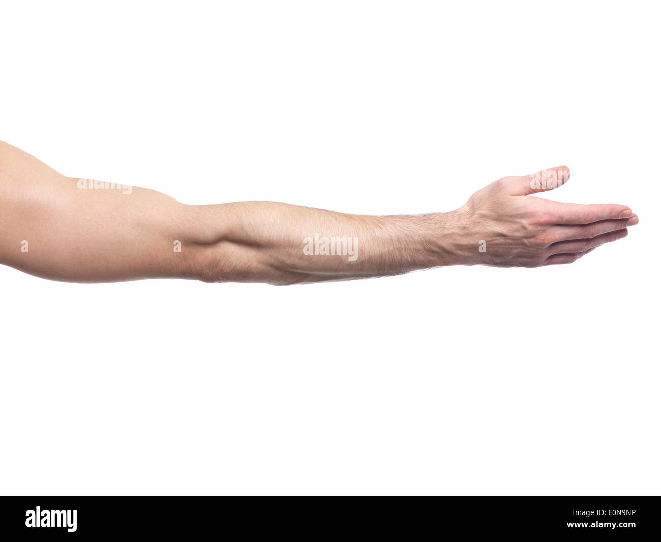 Extended man arm with open palm isolated on white background - Stock Image