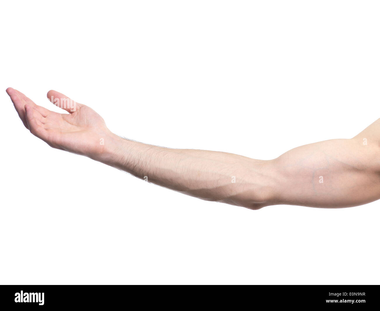 Extended male arm with open palm isolated on white background - Stock Image