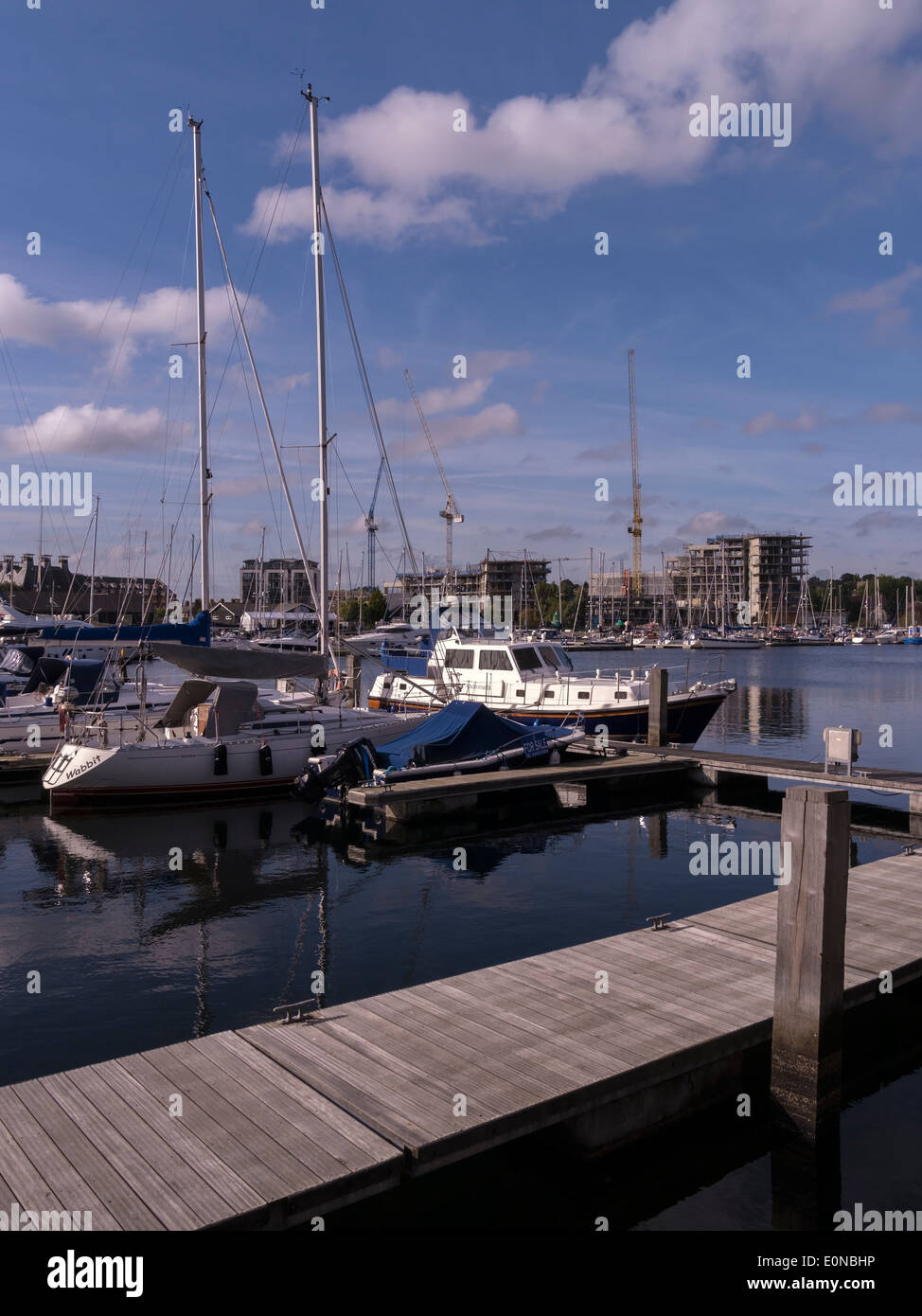 Neptune marina with extensive building work and cranes in the distance during dockside redevelopment / regeneration, Ipswich - Stock Image