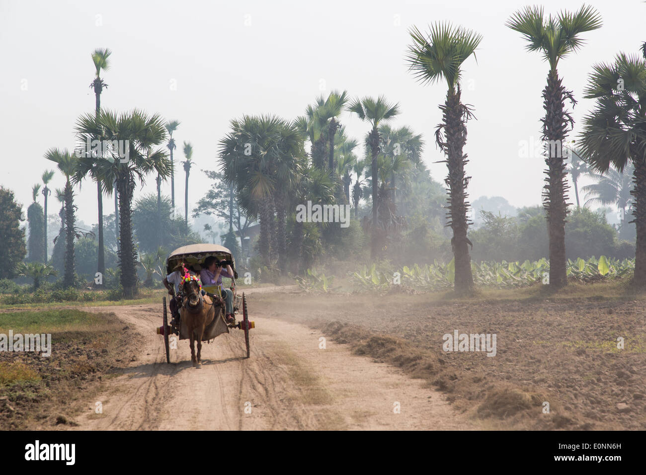 Pony and trap near Mandalay, Myanmar - Stock Image