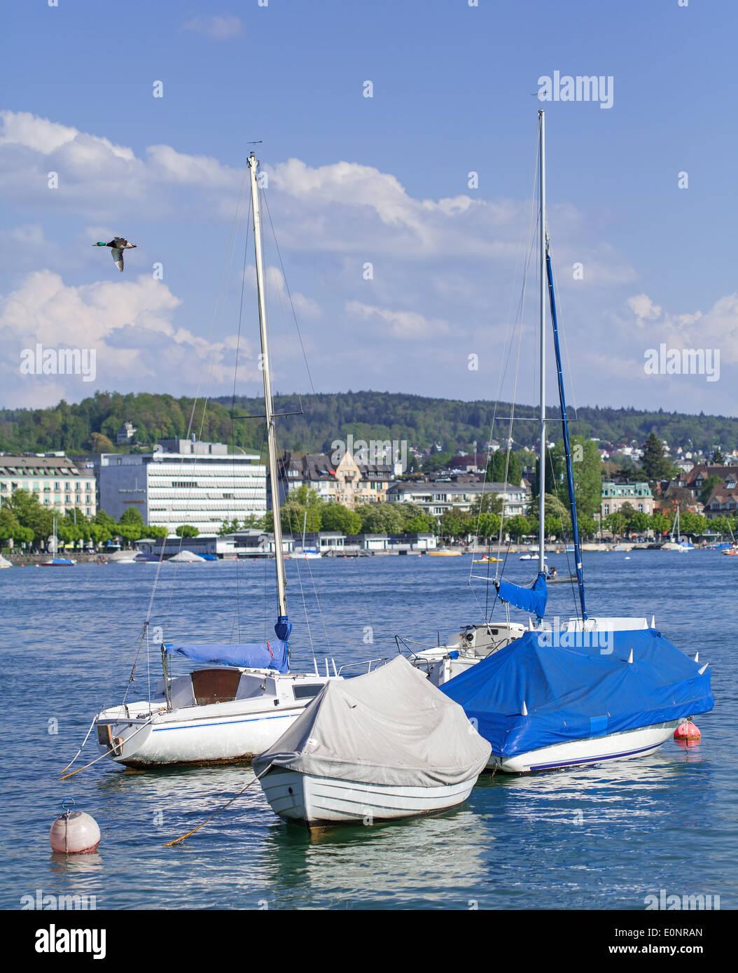 Lake Zurich in spring - Stock Image
