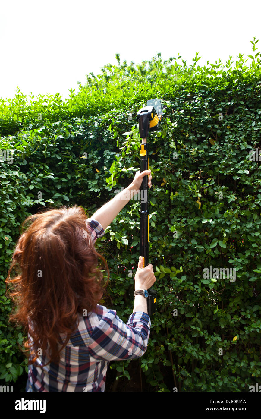Woman trimming hedge with an cordless electric hedge trimmer - Stock Image
