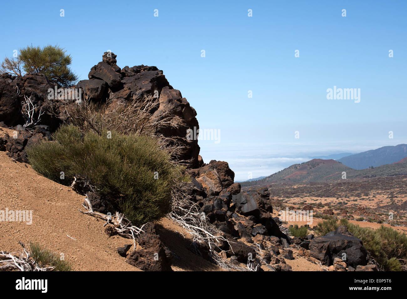 Tenerife, lava covered landscape of the area around Mt Teide Stock Photo