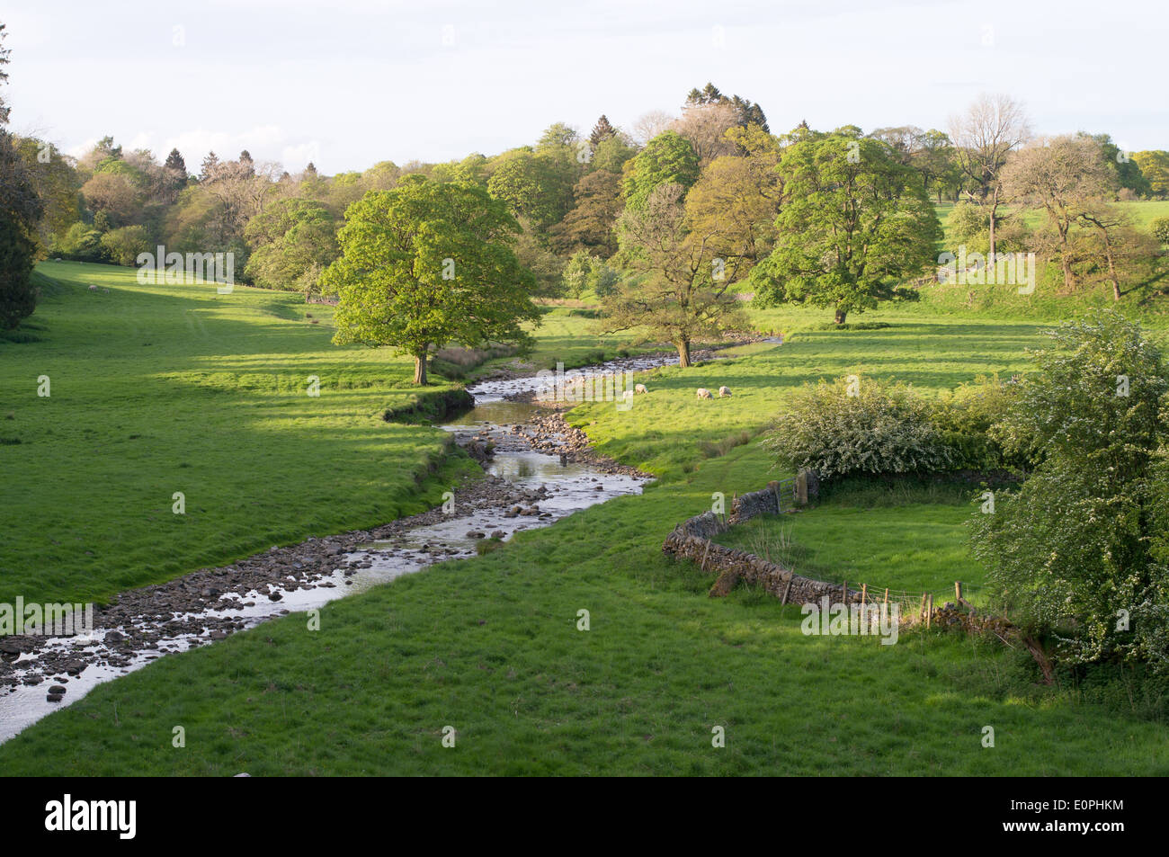 Tosside Beck river valley Bolton-by-Bowland, Lancashire, England, UK - Stock Image