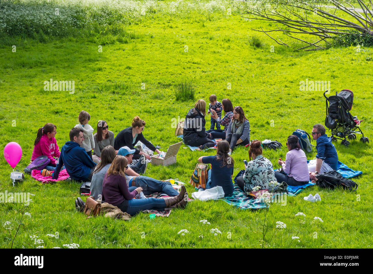 Family and Friends Picnic Picnicking in Meadow - Stock Image
