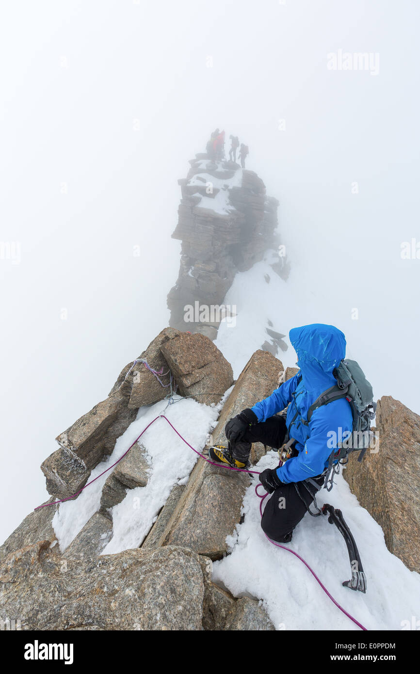 Descending from the summit of Gran Paradiso, Italy, Alps, EU - Stock Image