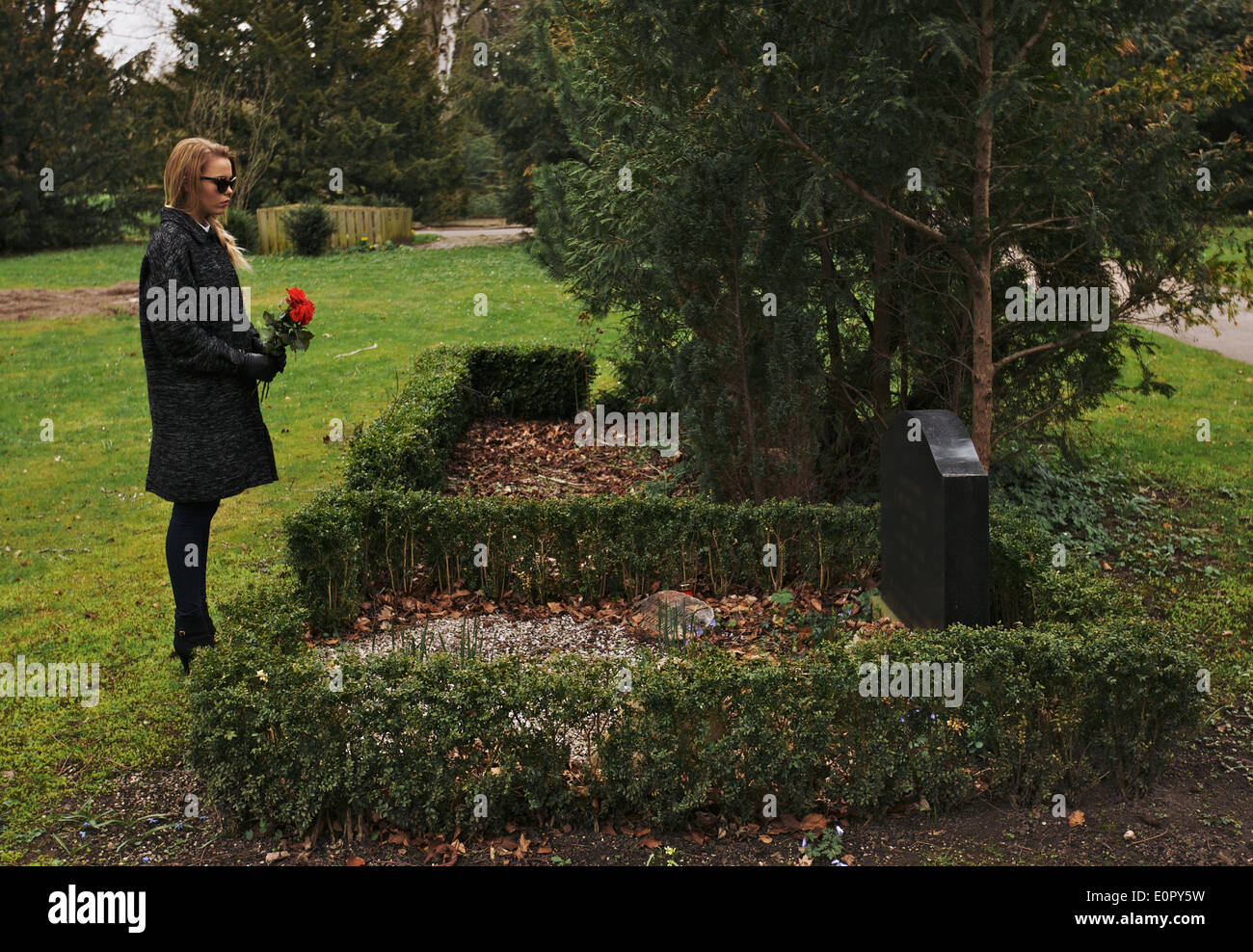 Sad woman grieving in a cemetery holding red roses. Young woman standing at the gravestone of her family member. - Stock Image