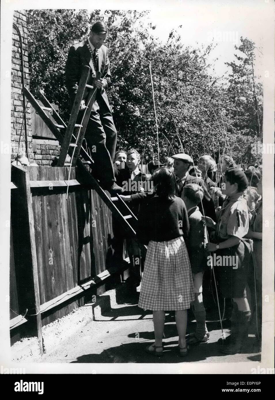 May 05, 1957 - Beating The Bounds Ceremony: The ancient custom of beating the bounde of the parish of Chipping Barnet, was carried out today. It was last performed in 1933. Picture Shows: Councillor J.M. Keyworth, Chairman of the Barnet Urban District Council, climbs over a fence with the did of a ladder, in order to follow the boundary line- during today's ceremony, watched by local children armed with their Willow Wands. - Stock Image