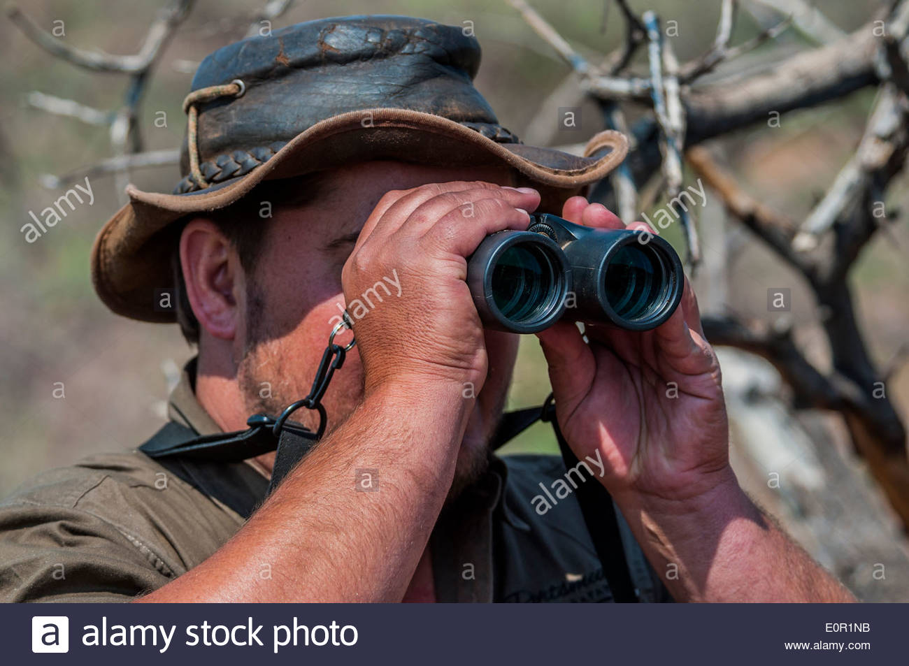 A hunter checking for wild animals through binoculars on a hunting farm in Namibia. - Stock Image
