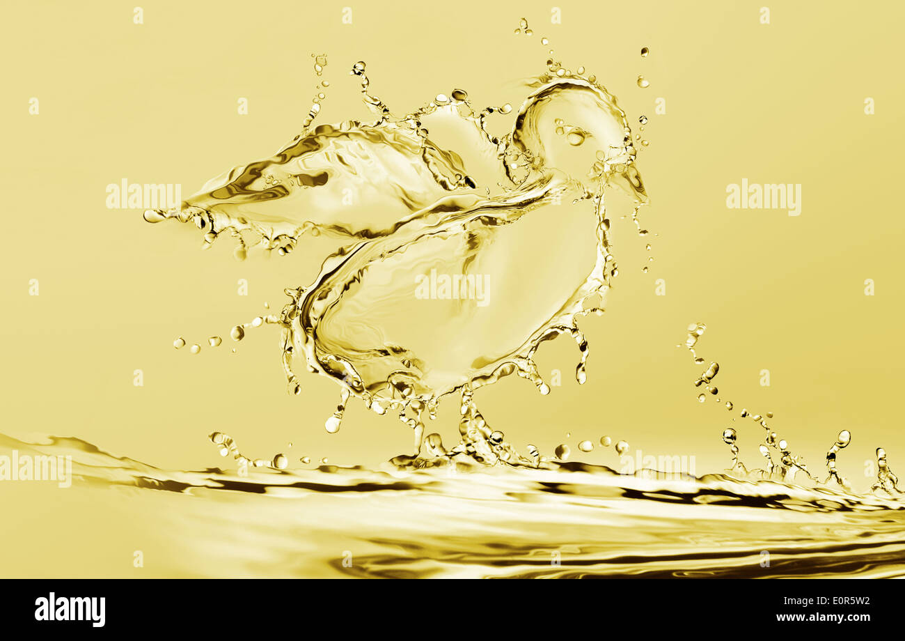 Yellow Water Chick - Stock Image
