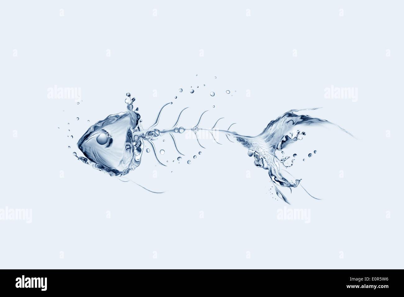 Water Fishbone - Stock Image
