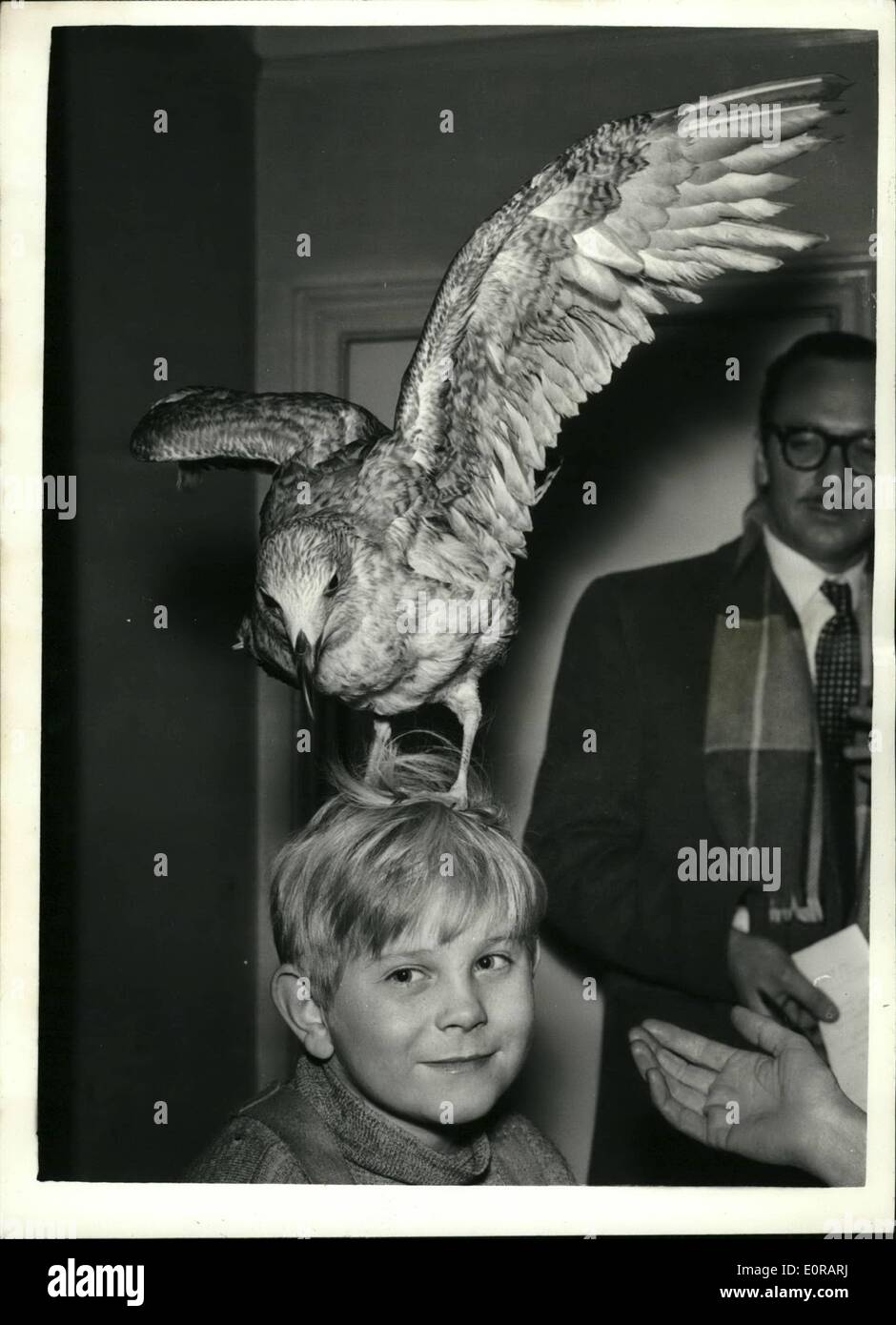 Nov. 11, 1958 - Nine year old London boy who stars in the new film ''The Boy and the Bridge'': Nine year old Ian McLaine, of Stke Newington, is the boy who plays the title role in the new Xandu film ''The Boy and The Bridge''. He was chosen from more than 3,000 aspirants and has never had any Previous professional experience. The two heroes of this film are, in fact, The Boy, and the Bridge. The boy plays the part of a 9 year old cockney who runs away from his father and his squalid Bermondsey lodgings - Stock Image