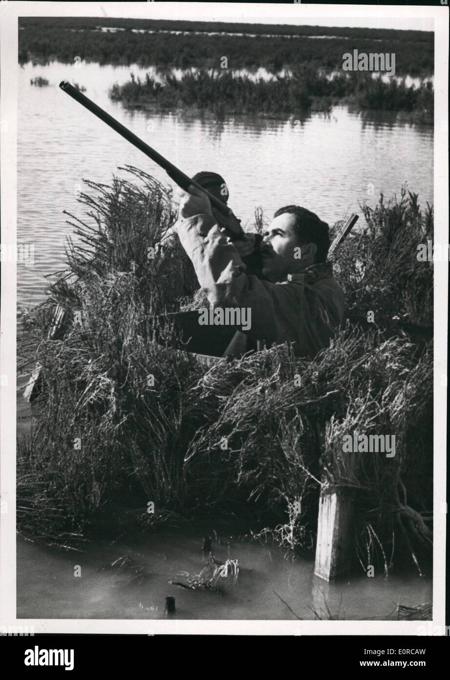 Jan. 01, 1959 - The Lebanese Premier, an excellent sportsman shooting the canard at Lake Mariout. ne Pict - Stock Image