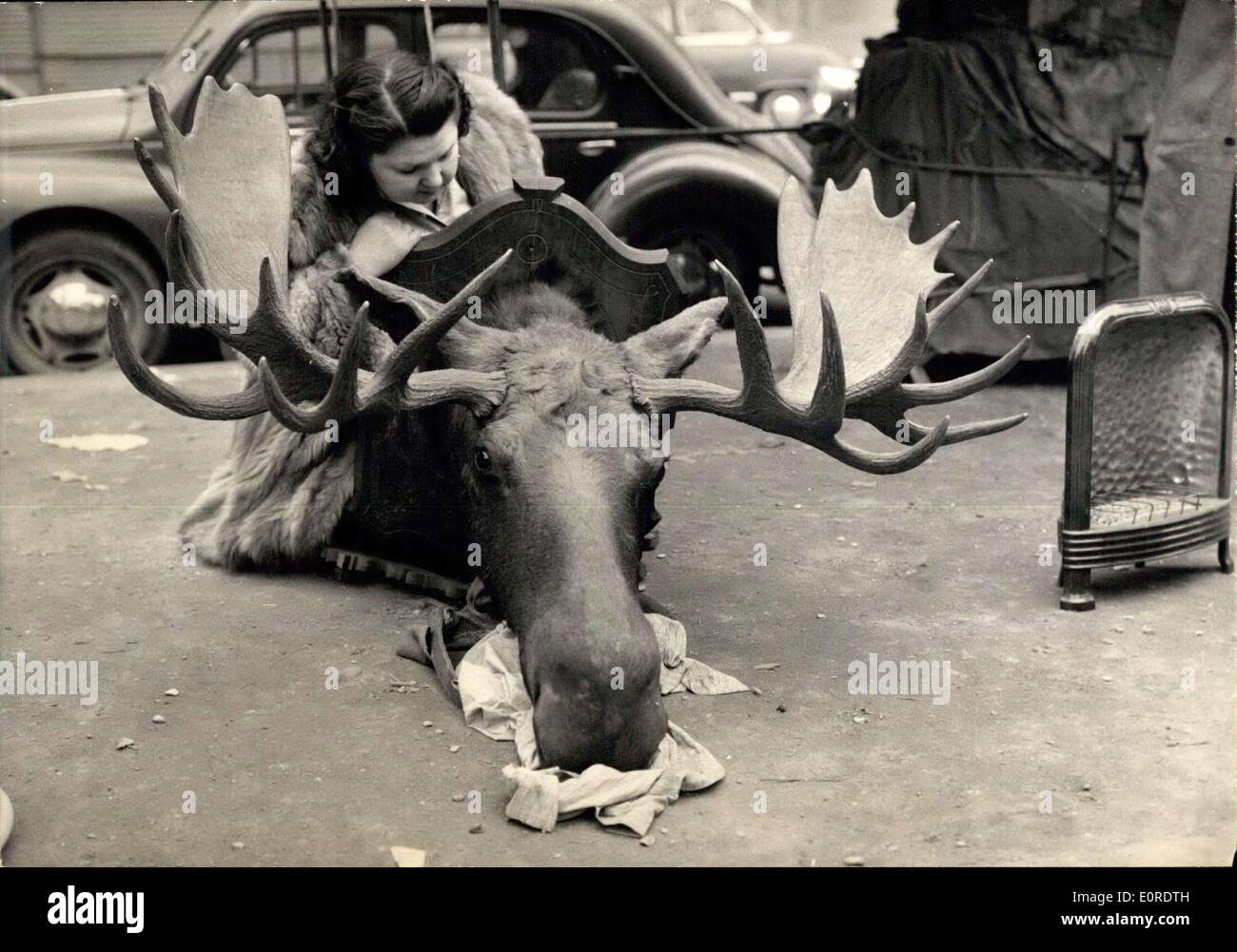 Mar. 20, 1959 - Jung Fair opens in Paris. Photo shows a stuffed head of a reindeer, one of the ''Bargains'' to be seen at the Annual Junk pair held during the easter holidays in Paris. - Stock Image