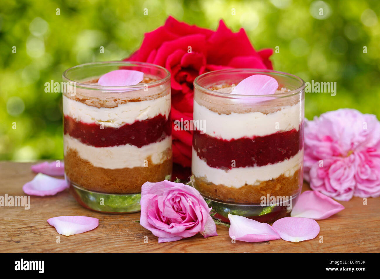 Roses tiramisu. Recipe available. Stock Photo
