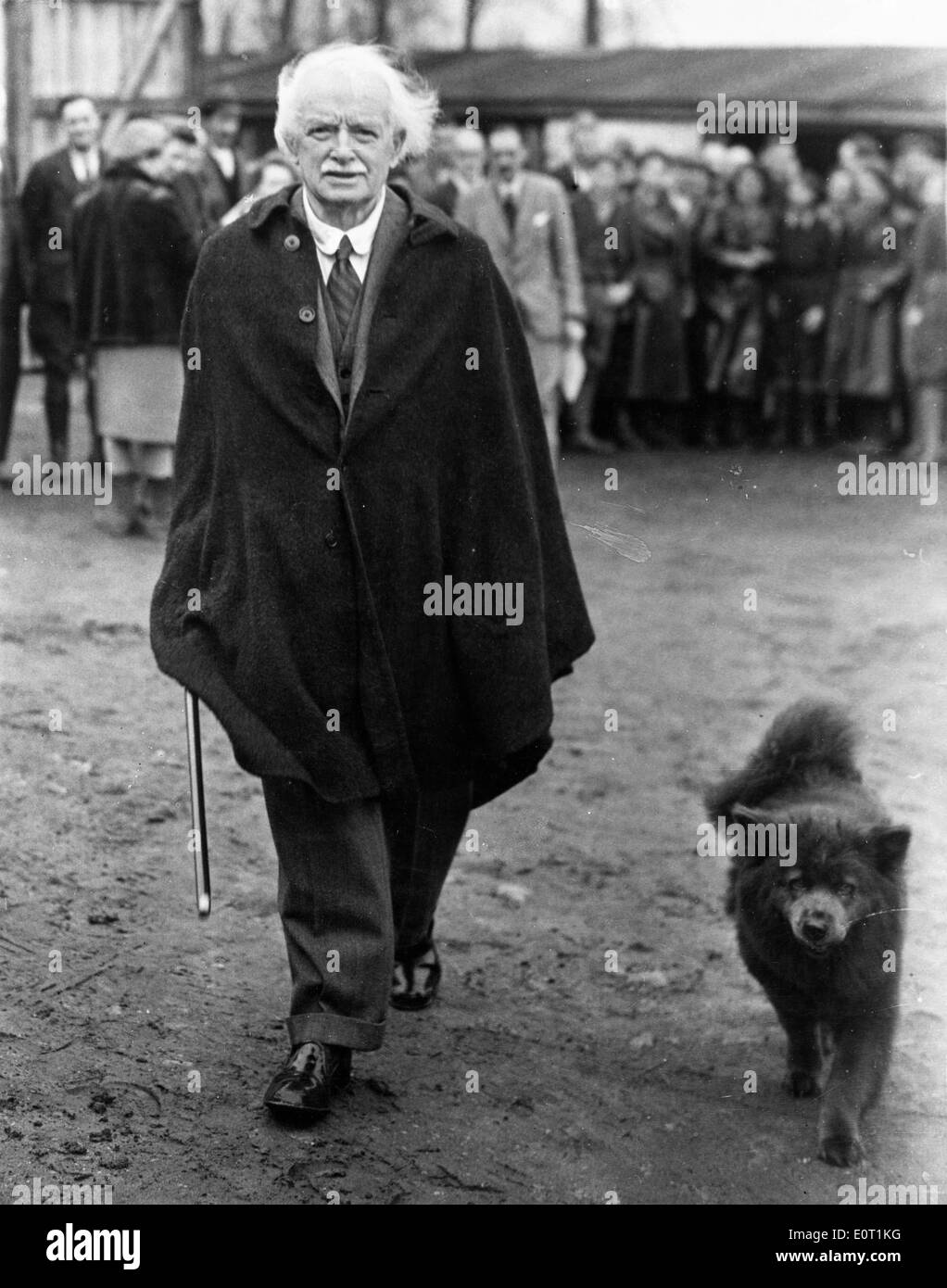 Prime Minister David Lloyd George Walking His Dog Stock