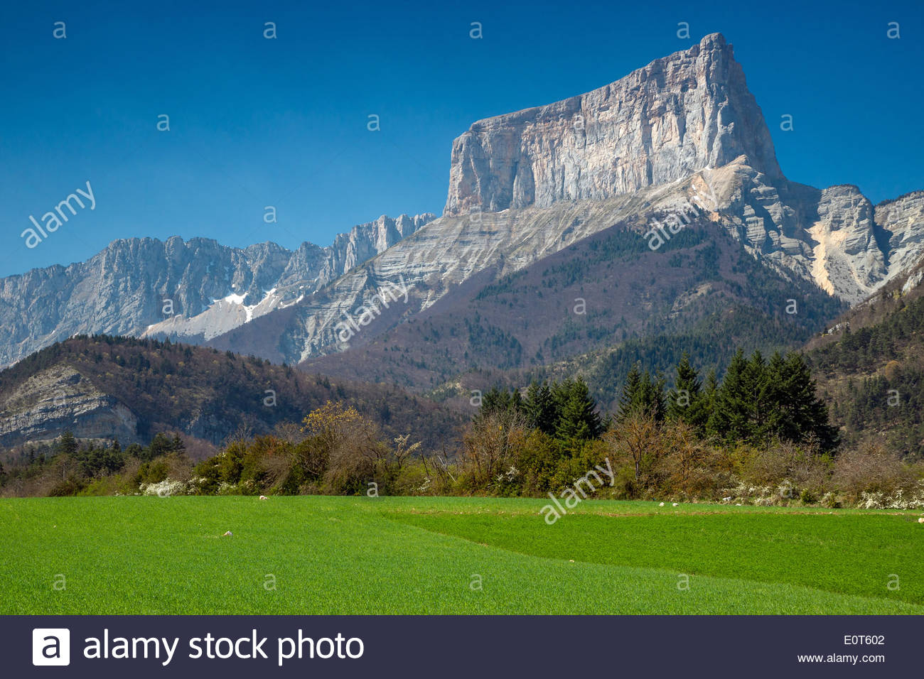 Mont Aiguille in Trièves (France) - Stock Image