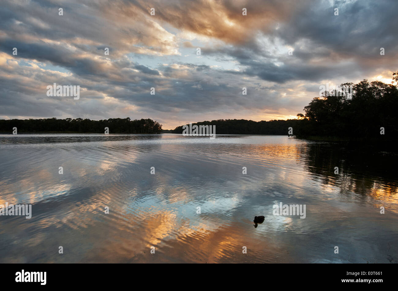 Sunset reflections at Myall Lakes. - Stock Image