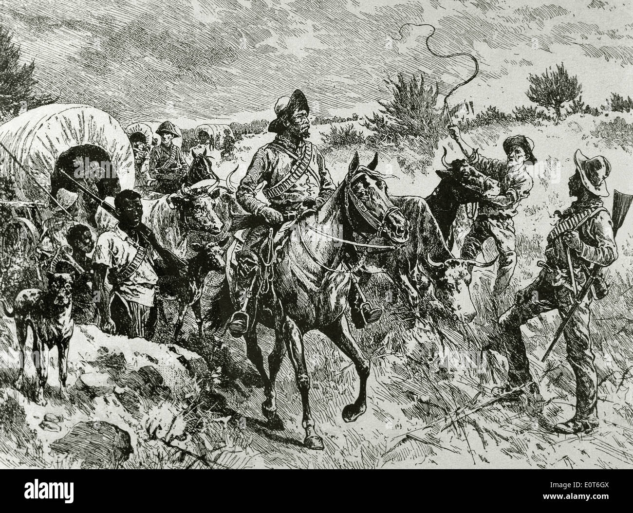 Second Anglo-Boer War (1899-1902). A convoy of Boers. Engraving, 19th century. - Stock Image