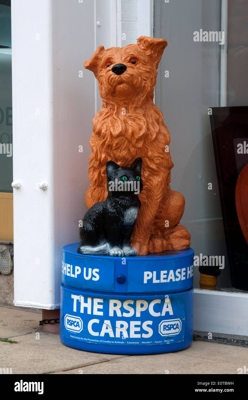 RSPCA street collection box - Stock Image