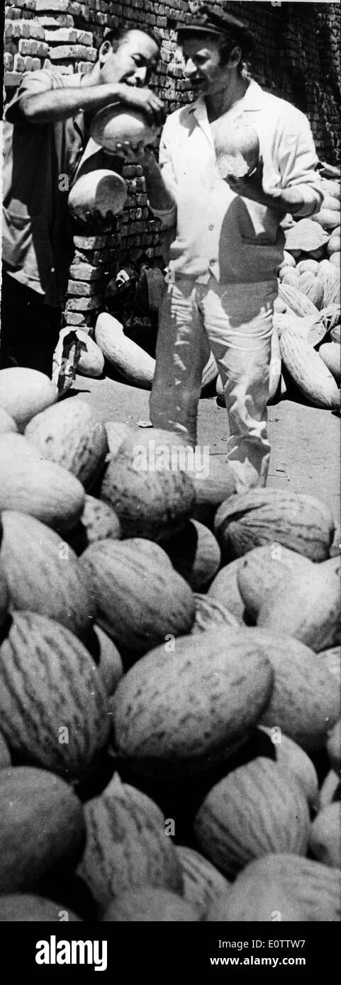 French mime Marcel Marceau picking out watermelons - Stock Image
