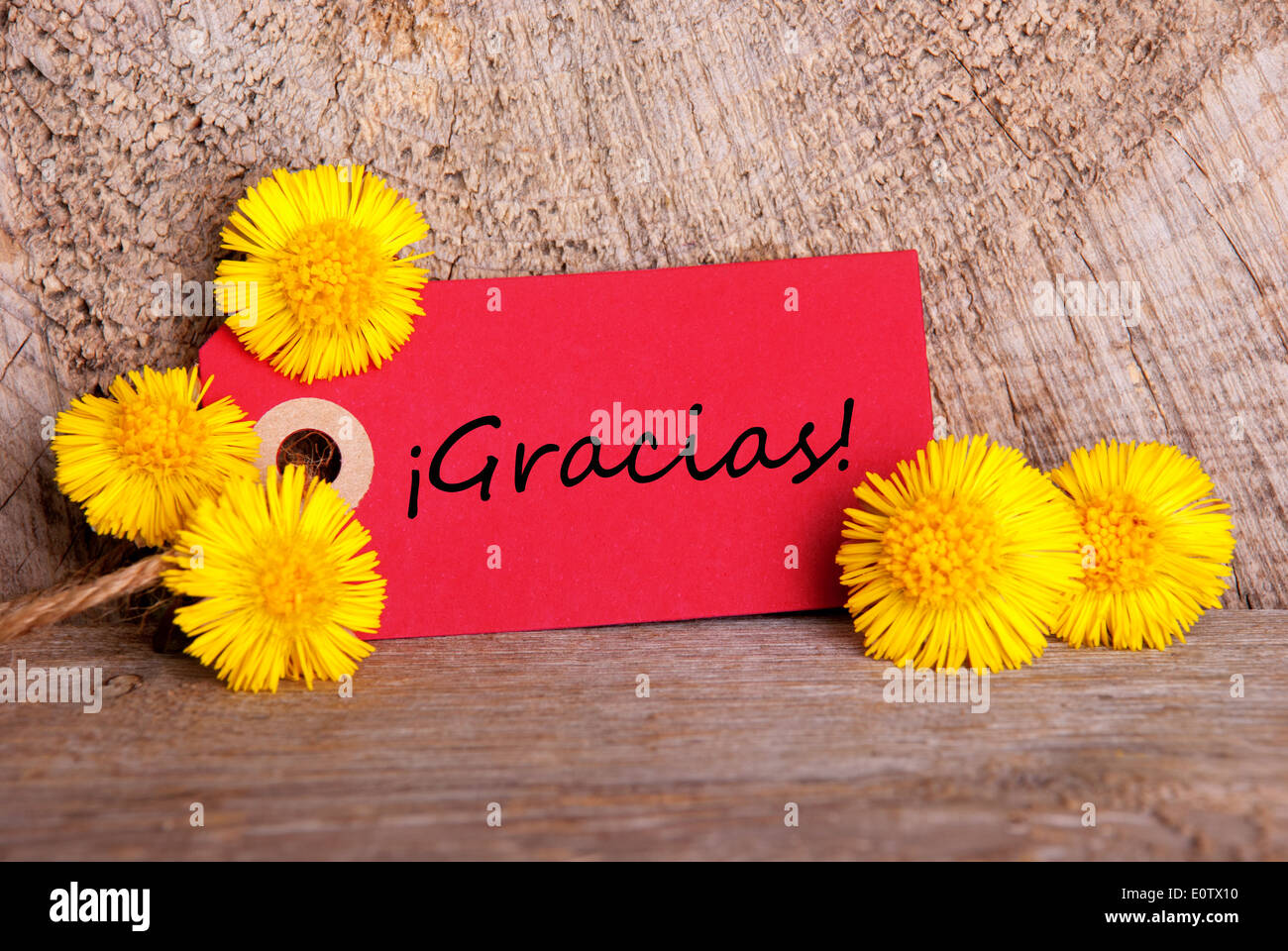 Yellow Flowers Tag Spanish Word Stock Photos Yellow Flowers Tag
