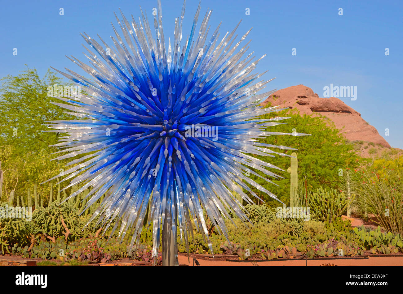 The legendary glass artist Dale Chihuly exhibited his work at The Desert Botanical Gardens in Phoenix, Arizona, Stock Photo