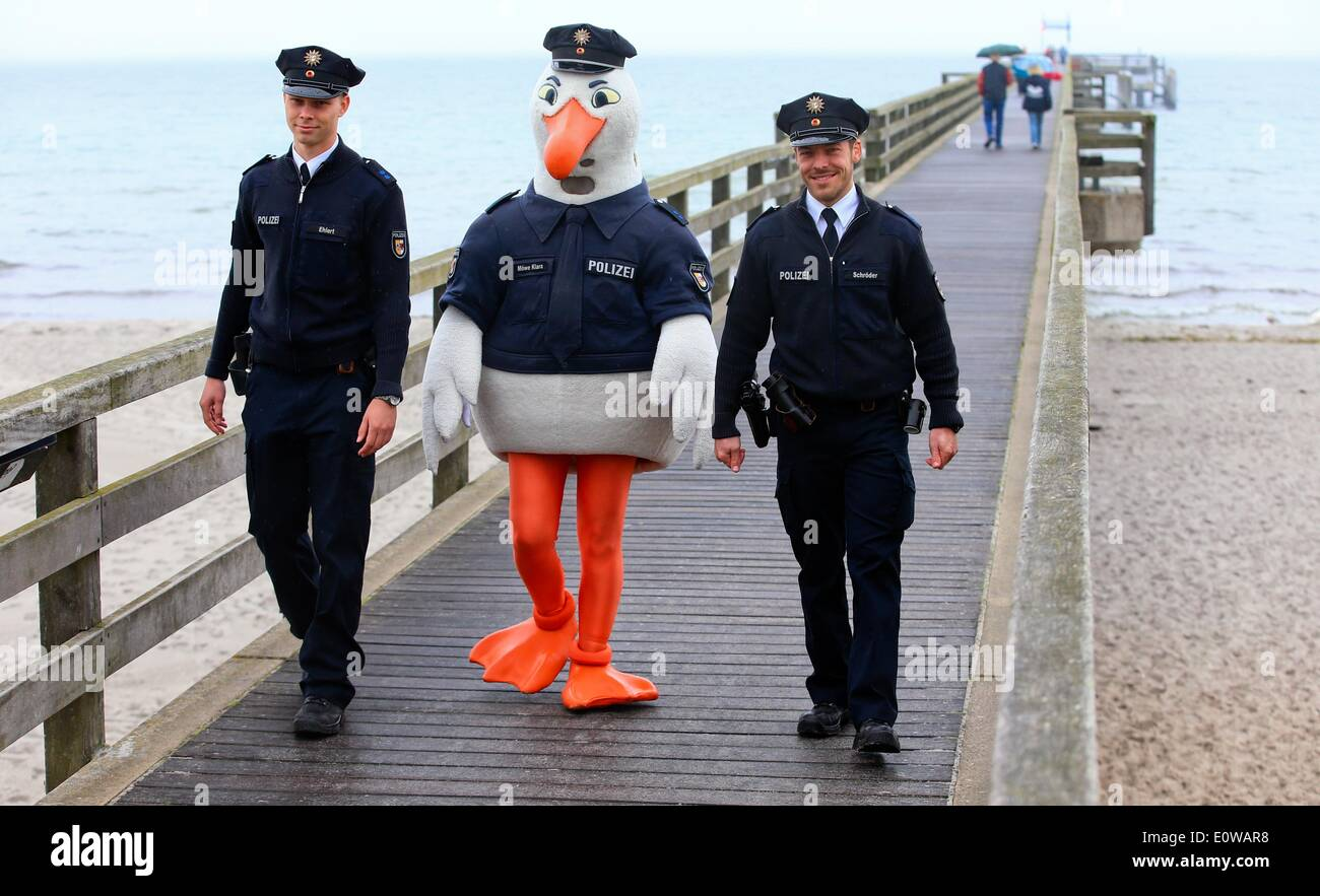 Boltenhagen, Germany. 19th May, 2014. Police seagull 'Klara' walks along the pier between two police officers on Stock Photo