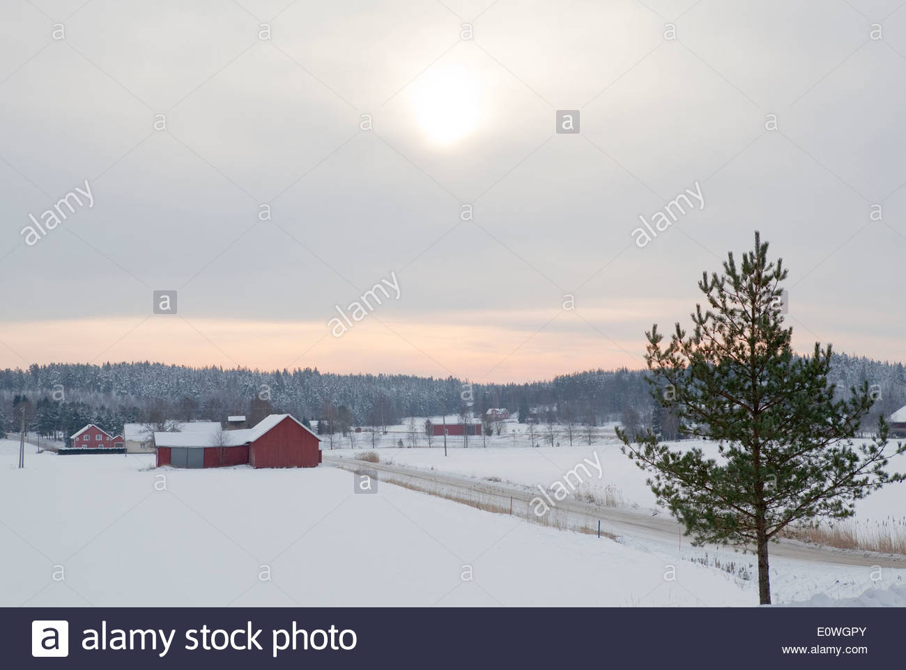 Rural countryside in winter - Stock Image