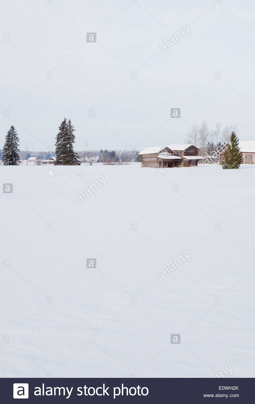 Finnish countryside in winter - Stock Image