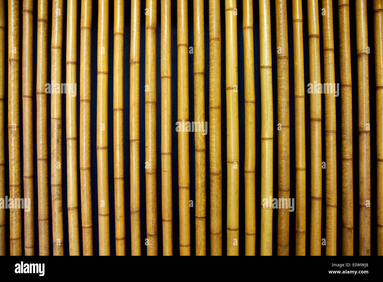 Parallel bars of Bamboo as a wall decoration - Stock Image
