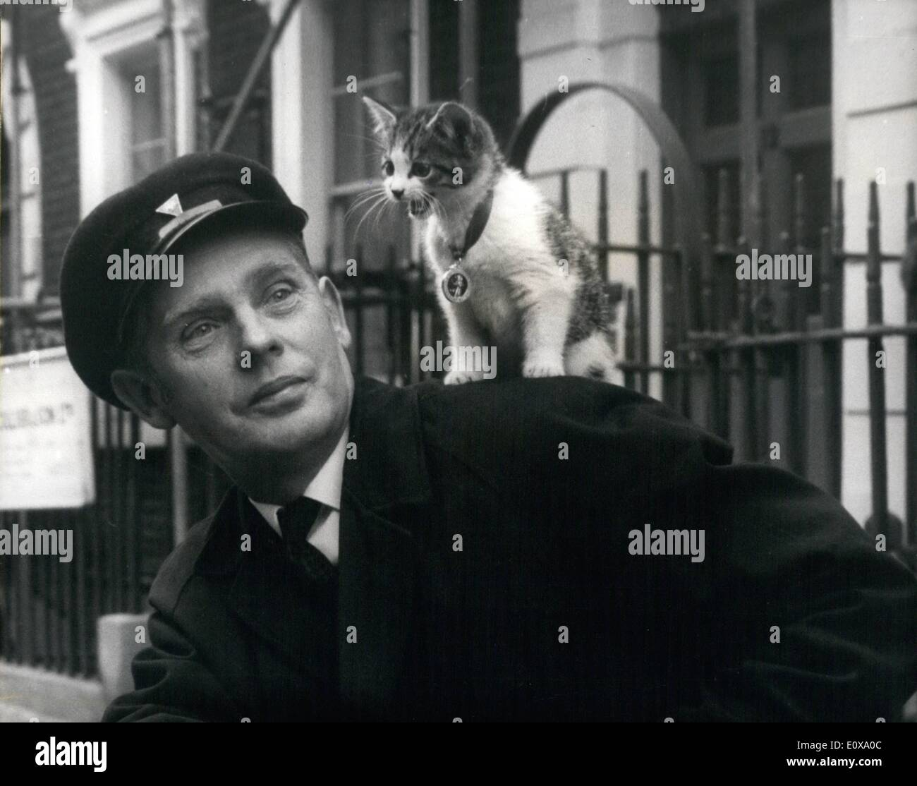 Dec. 12, 1965 - Holly The Kitten Goes To New Home By Rolls. Holly the kitten was pushed through the letter box of the Canine Defence League's headquarters in London. Around her neck was a 10s. note and a letter seeking the league to find her a good home. The league was inundated with offers for her. They decided to give the kitten to Mr. Reginald Kilby and his wife Patricia, who live in Amersham, Bucks. Holly was taken to her new home by Rolls Royce - Stock Image