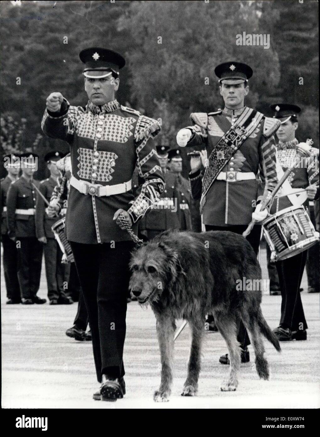 Sep. 27, 1967 - New Regimental Mascot for the Irish Guards: A 10-month old Irish wolfhound, Fionn, yesterday became the new regimental mascot of the First Batallion Irish Guards, at Pirbright, Surrey. Fionn was taking over from another Irish wolfhound, Shaun, who was being demobilised with full military honours after his full seven years' service. Field Marshal Earl Alexander to Tunis, Colonel of the Regiment, was there to give Shaun a pat on the head and say: ''Goodbye old friend''. Shaun will be retired to Scotland. Photo shows the entire 1st - Stock Image