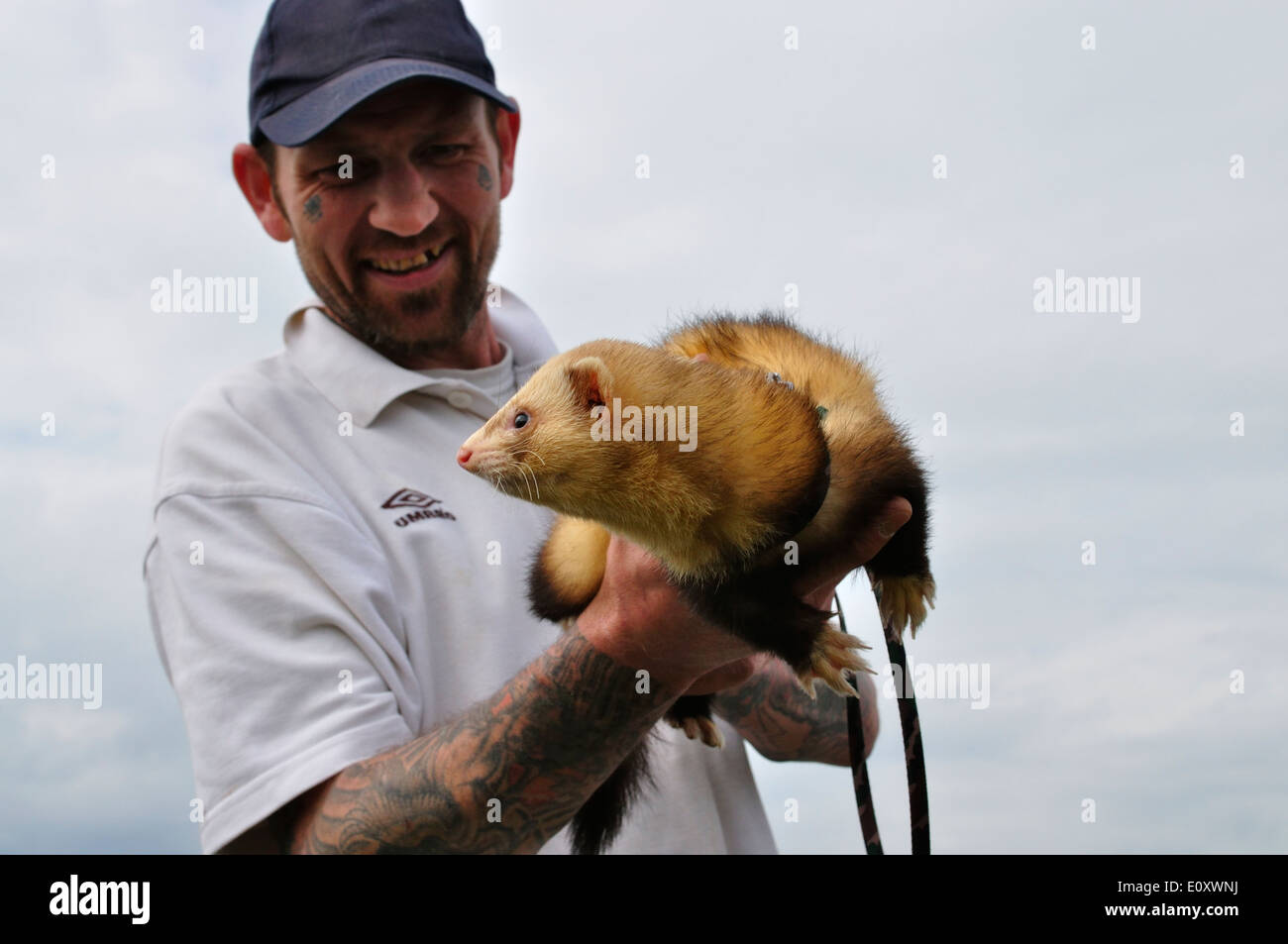 British man with tattoos on his face and arms,wearing a peak cap,holding his pet ferret.Lawford,Essex,UK - Stock Image