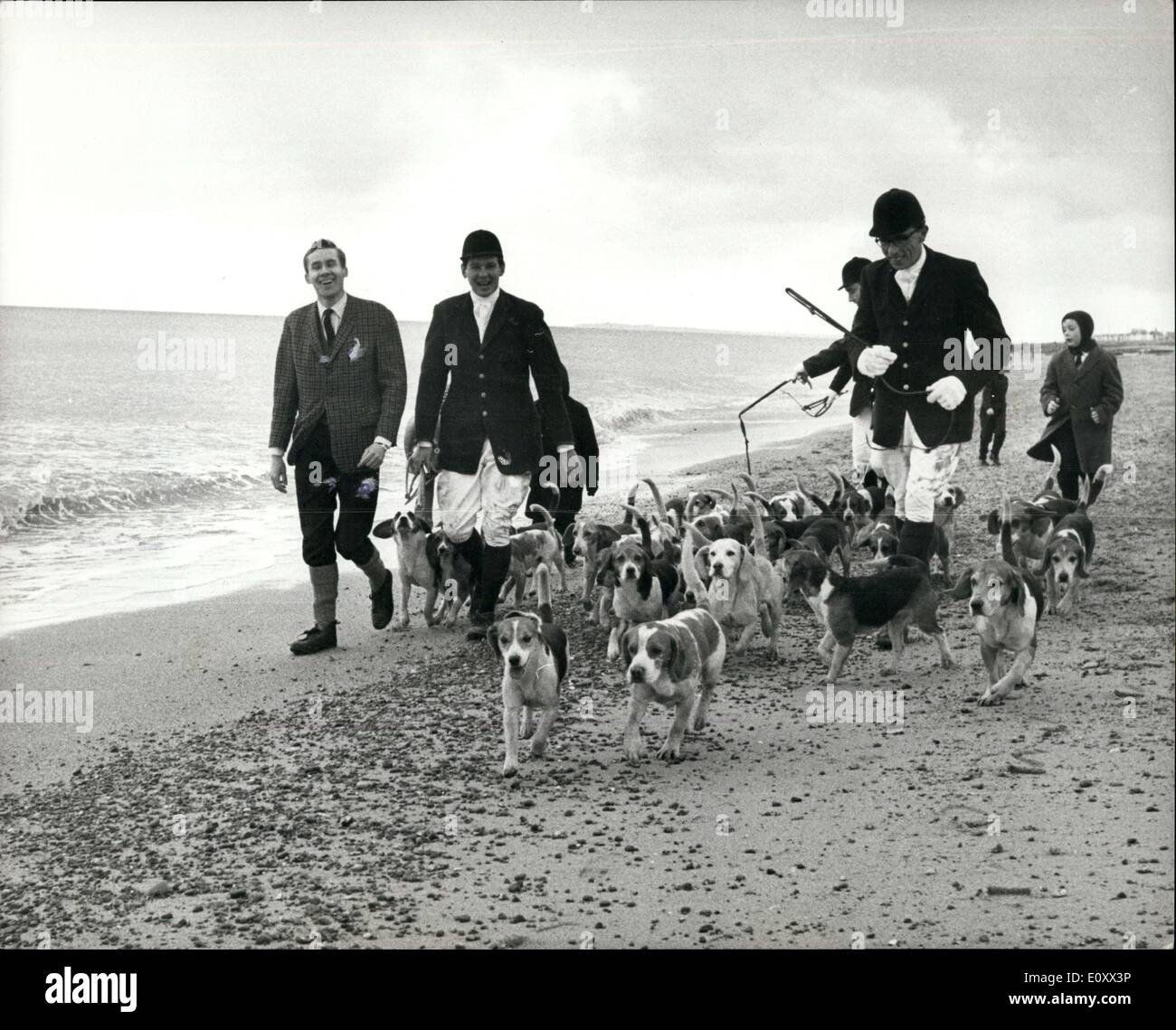 Dec. 27, 1967 - Boxing day meet on the beach ? Only one boxing day meet was held in England, on the beach at Felixstowe. Elsewhere, foot and mouth precaution kept the hounds in their kennels. But no one objected to the Sproughton Foot Beagles having an outing on the shingle. Said the chairman of the beagles, who normally hunt hares on farmland near Ipawich: ?We are conscious of our responsibility and we asked permission from the Ministry of Agriculture, the National Farmers? Union and other bodies concerned - Stock Image