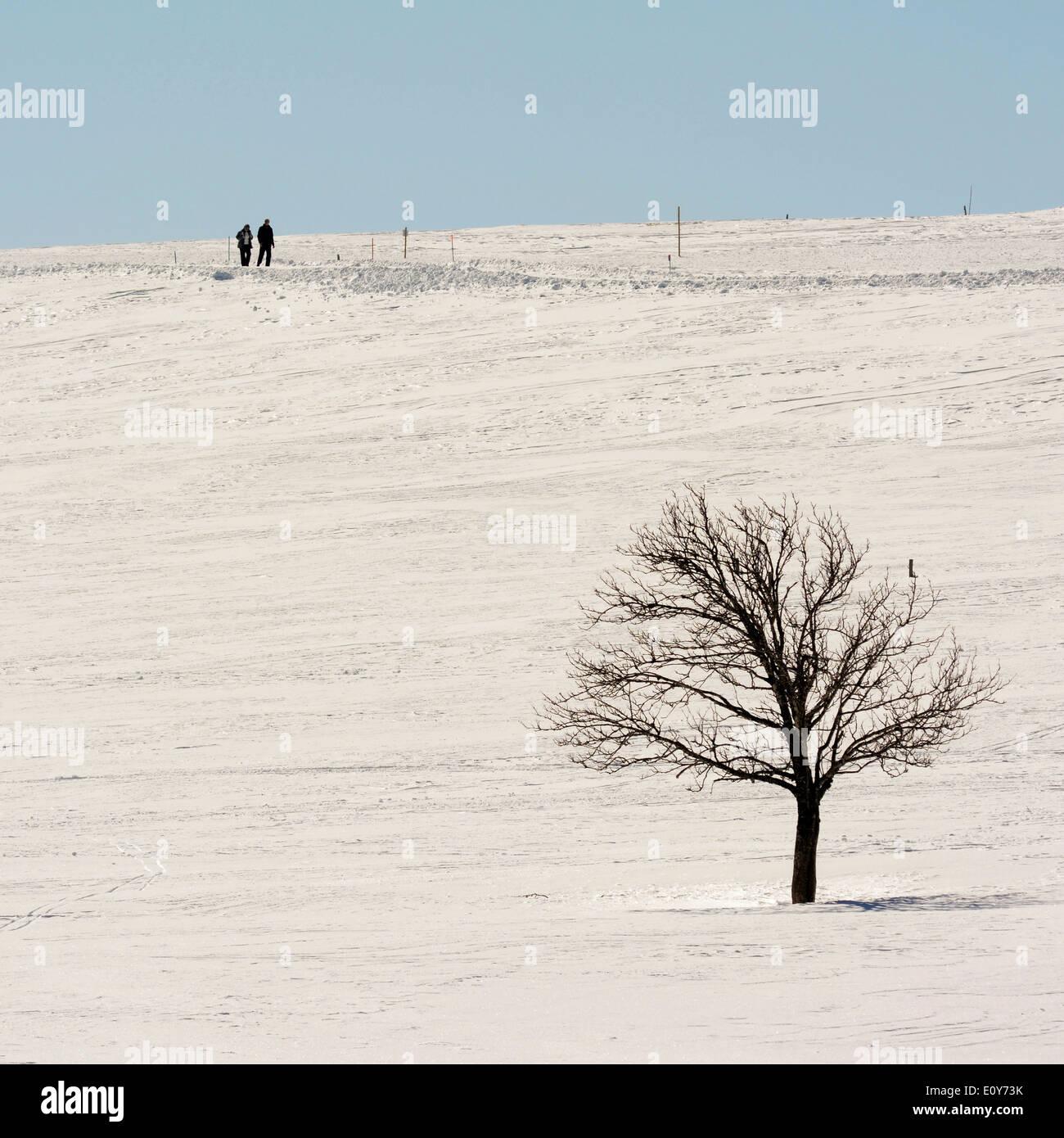 Two walkers in a winter scene landscape - Stock Image