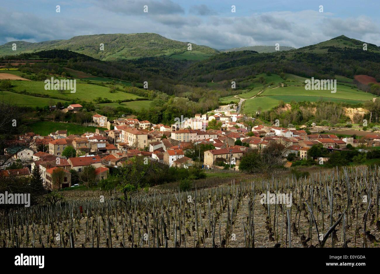 Village of Boudes and vineyard, Puy de Dome, Auvergne, France - Stock Image