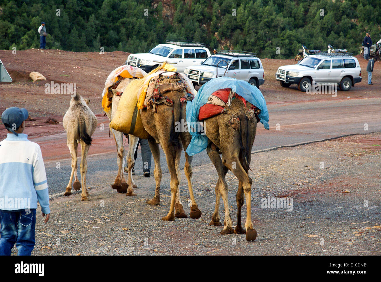 Ourika Valleyand river Morocco - Stock Image
