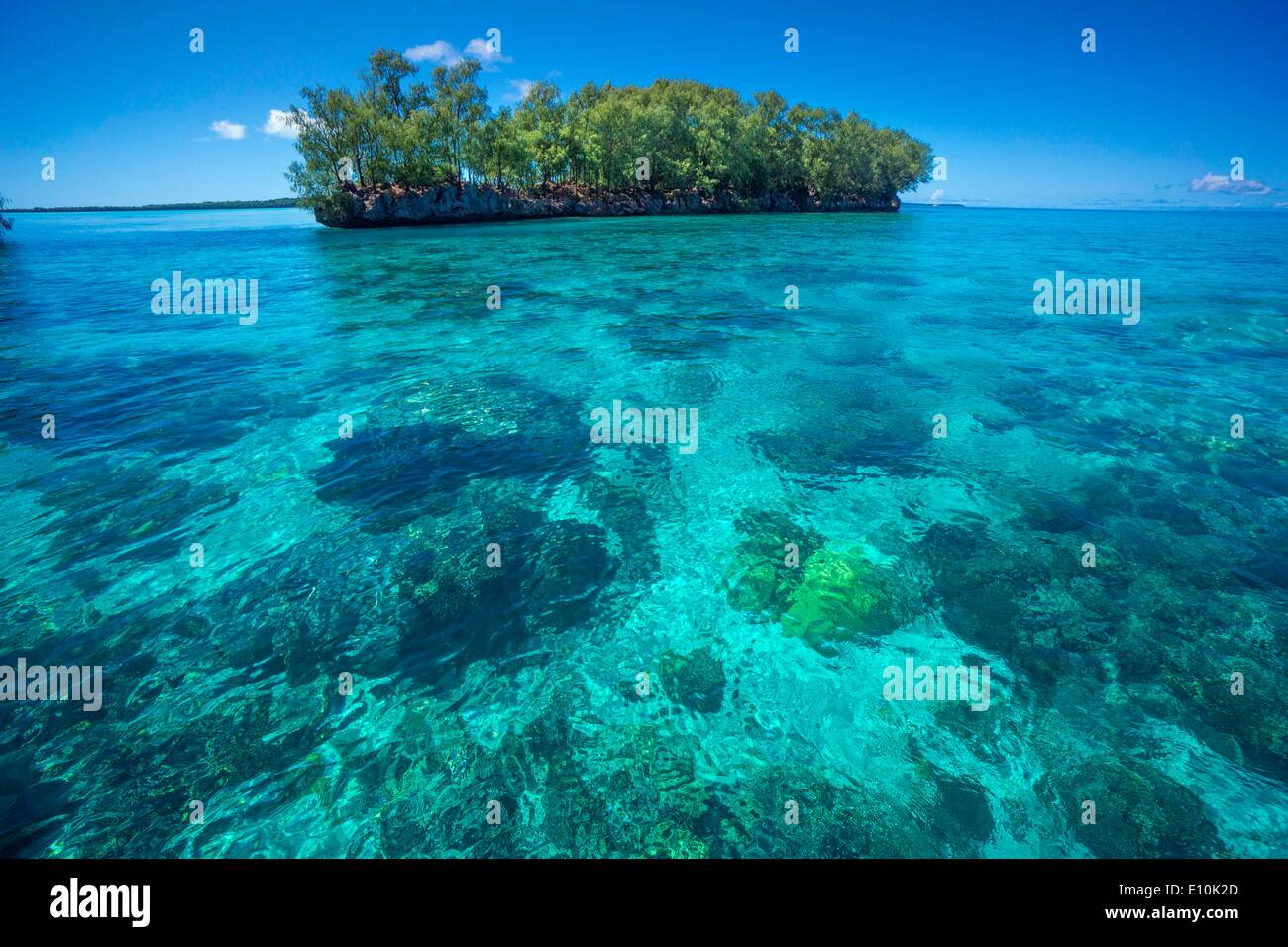 Palau Islands, Palau, Micronesia - April 2014 - Stock Image