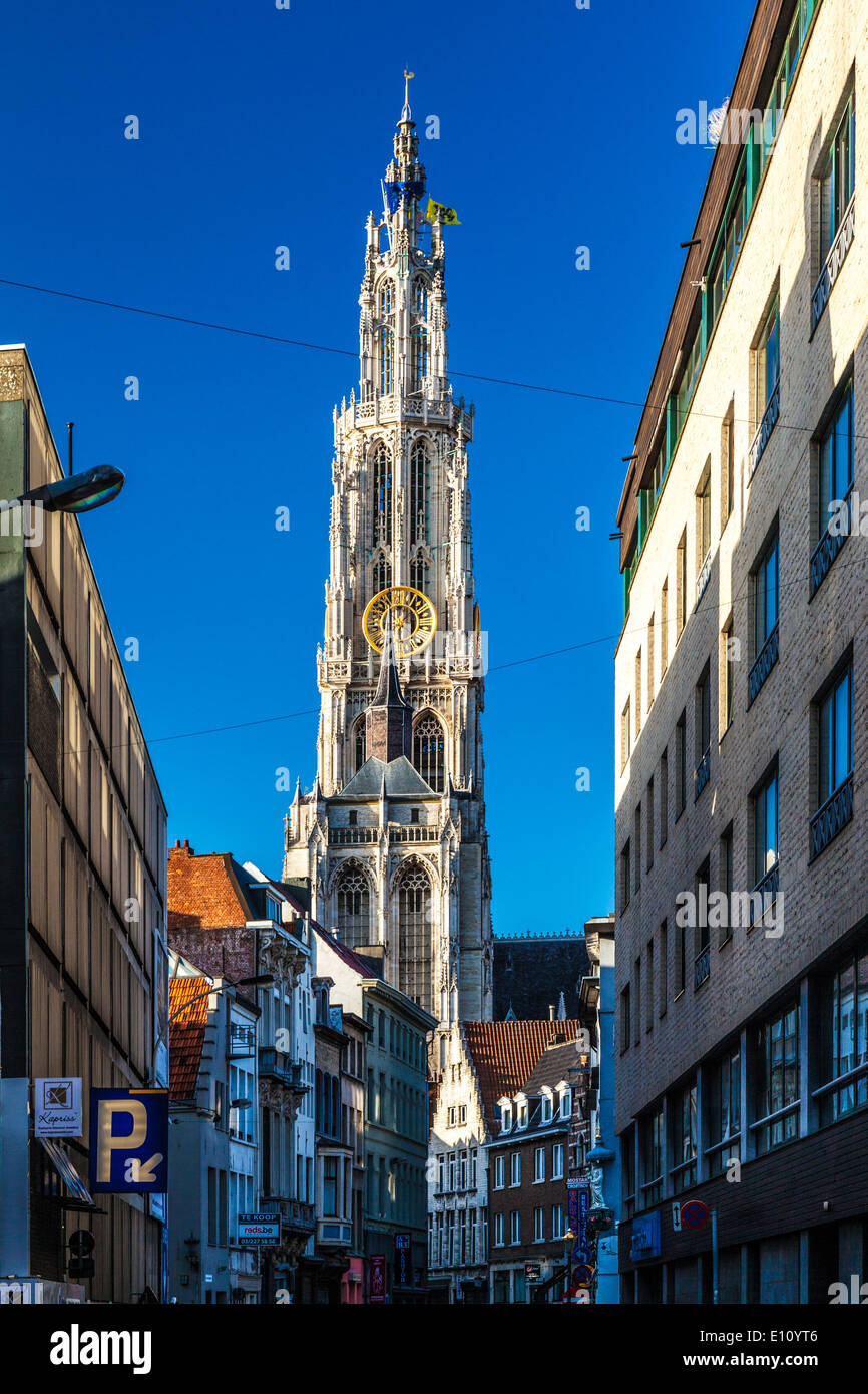 View down the Oude Koornmarkt towards the spire of the Cathedral of Our Lady in Antwerp. - Stock Image