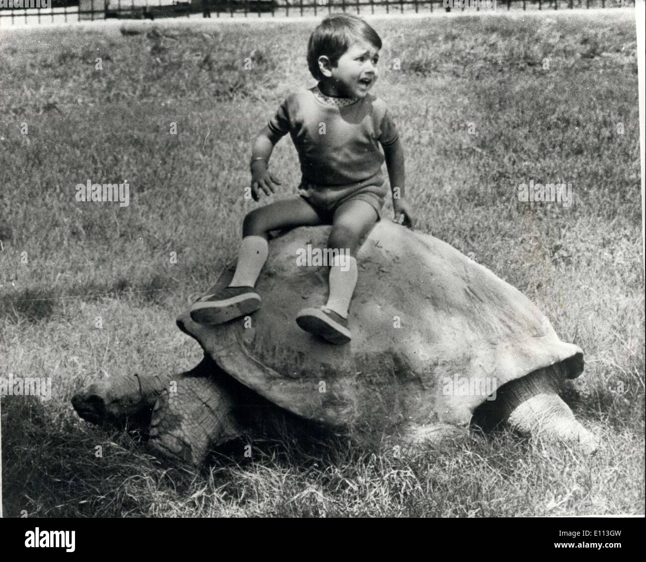 Oct. 06, 1975 - 150-year-old Elephentine Tortoise - the World' Oldest Animal: An 150-year-old Elepentine Turtoise, the oldest resident of the Calcutta Zoo. and claimed to be the oldest animal in any zoo all over the world, was the star attraction when the zoological gardens observed its centehary on September 30th, 1975 Out of the original eight kept in East India Company's Barrackpore Zoo., Four were brought to te Calcutta Zoological Gardens, founded by Lt. General Sir Richard Temple, the Lt-Governor of Bengal in 1875,exactly 100 years ago - Stock Image