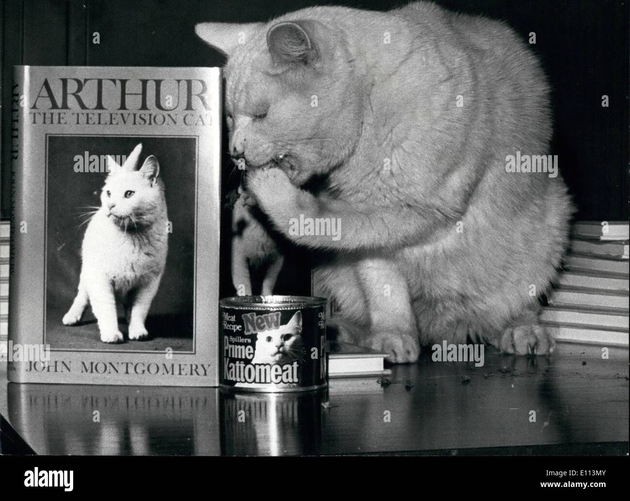 Oct. 10, 1975 - Arthur the T.V. Cat has a book published: Arthur the television cat today added one more accomplishment to his story of success. He has just had his life story published and today he was available to ''autograph'' it. The book wirtten by John Montgomer covers the story of the cat that that has been the star of more than 30 t.v. films and also the subjects on man a Tshirt and towel, he also has the dubios honor of being the victim of a kidnapping - Stock Image