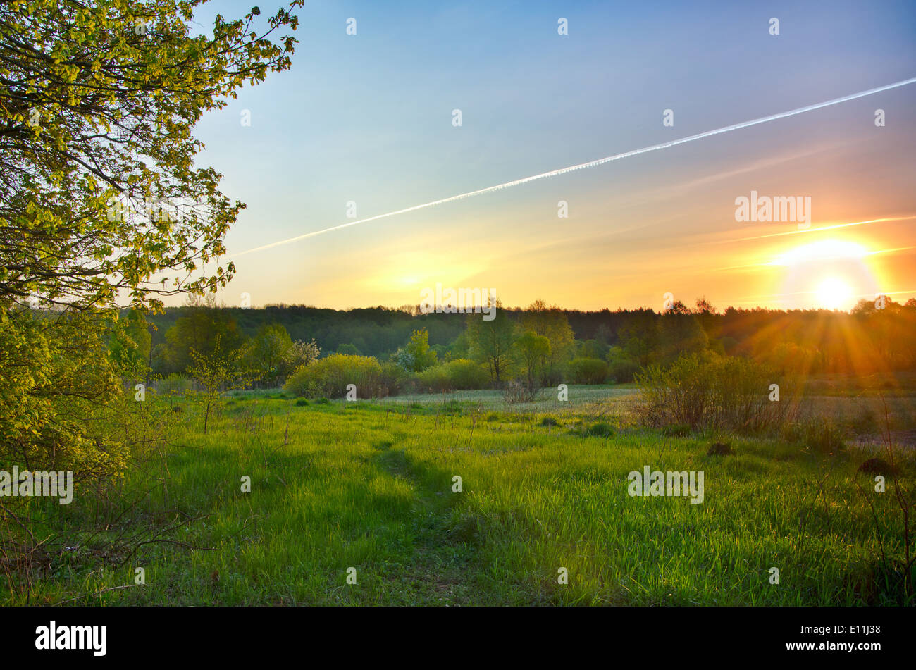 Landscape with the sun rising over the green spring meadow and lines from the aircraft in the sky - Stock Image