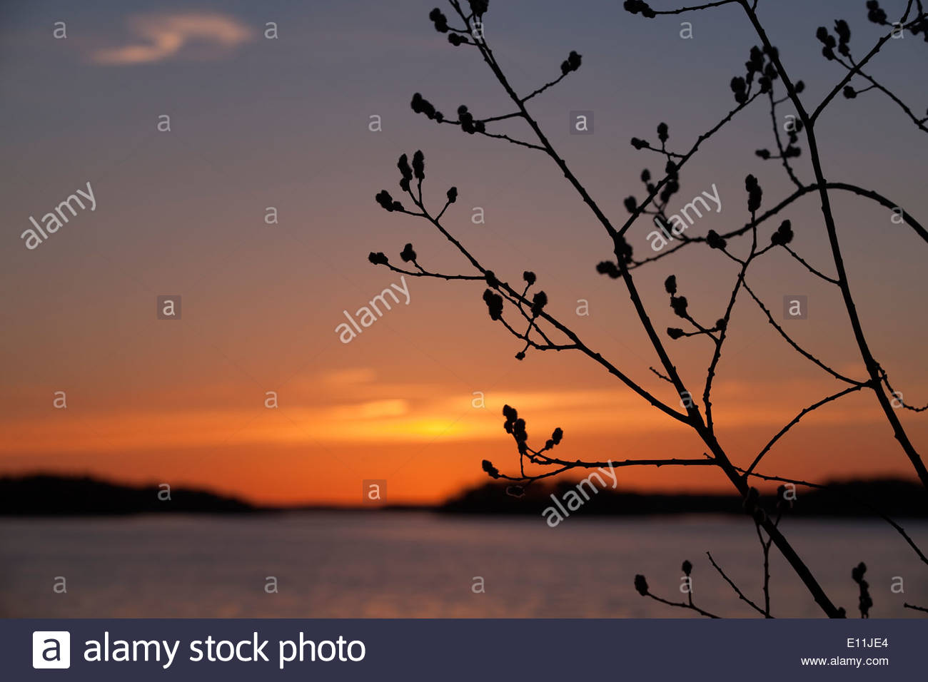 Orange sky in March - Stock Image