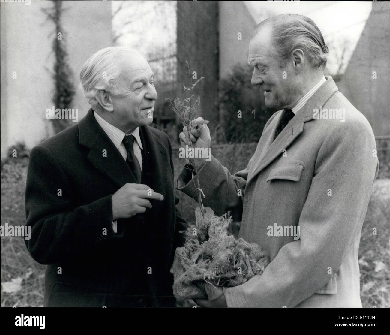 Feb. 02, 1980 - Duke Of Wellington Plants Turkey Oak At London Zoo: The 8th Duke of Wellington today presented a Stock Photo