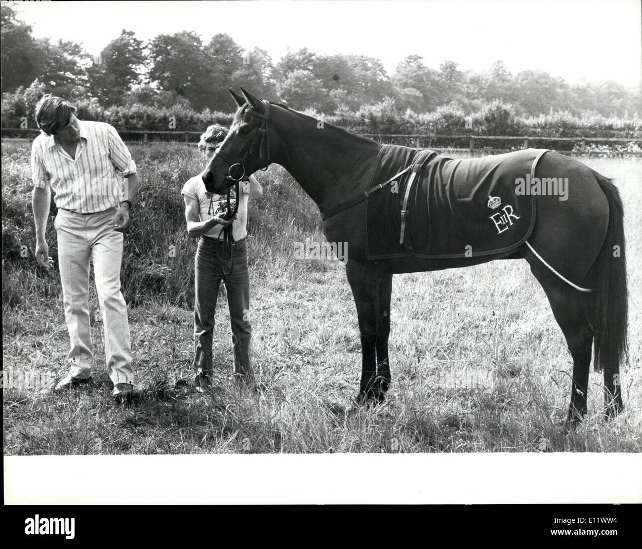 Jun. 06, 1980 - Queen's Horse 'Australia Fair' at Newmarket: Australia Fair, the two-year-old filly racehorse presented to the the Queen by the Australian People as a belated Silver Jubilee gift, getting the feel of English Soil yesterday after her arrival at the Newmarket stables of trainer William Hastings-Bass. Photo Shows Australia Fair with trainer William Hastings-Bass being held by stable lad Tam McKay. - Stock Image