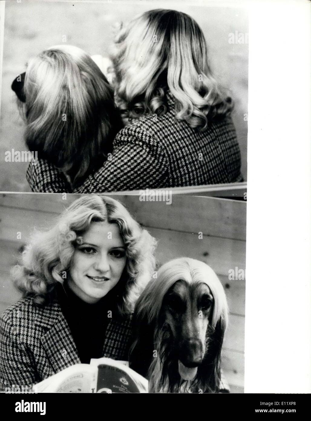 Feb. 13, 1981 - ''We are just good Friends?': Linda Clewley, from Wolrarhamption, took her best friends to the Curita Dog Show in Earls Court in London today - and in these day of long hair styles, from the back you can;t tell wether it a boy of a girl- but in this pictures you would be wrong- as the friends she is sitting with is her pet Dog Ziggi' an Afghan Hound who is entered in the show. Photo shows 'Young Lovars' Linda Clewley and her friend 'Ziggi'. Bellow Linda and Ziggi and her Afghan Hound at the Crufts Dog Show as they await the judging to start. - Stock Image