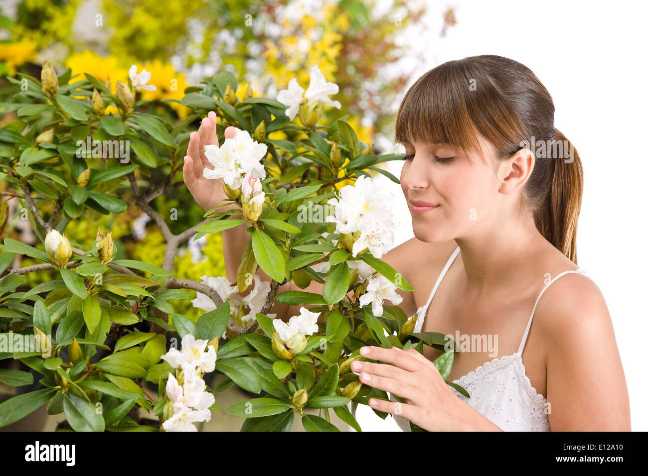 May 01, 2010 - May 1, 2010 - Portrait of woman smelling blossom of Rhododendron flower on white background - Stock Image