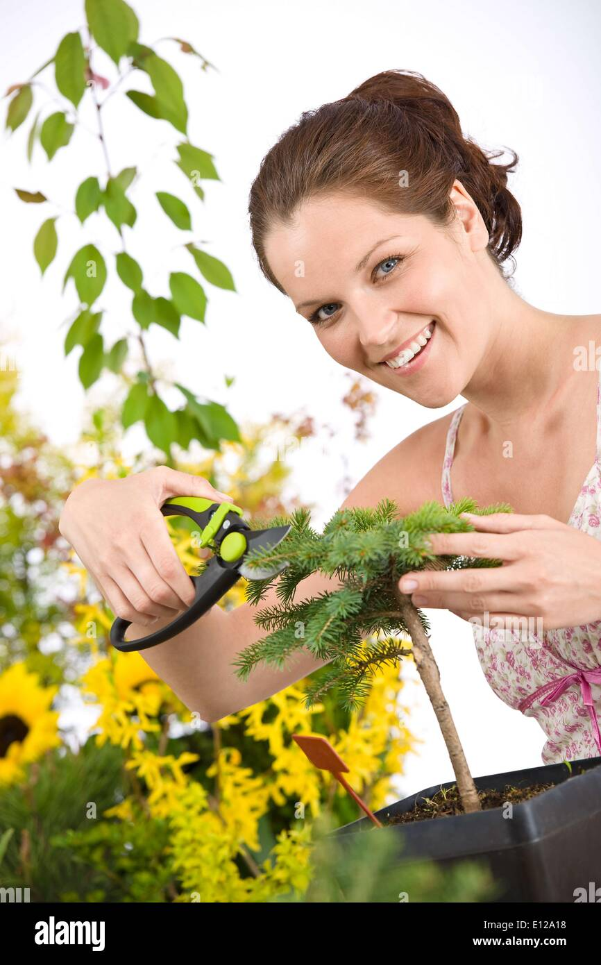 May 01, 2010 - May 1, 2010 - Gardening - woman cutting tree with pruning shears on white background - Stock Image