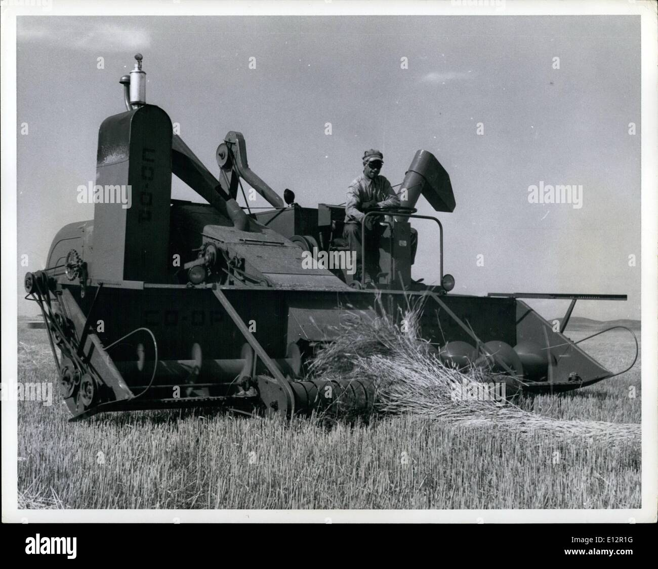 Feb. 24, 2012 - One of the self - propelled combines taking up the swath. All told the Matador has about 5,000.00 worth of farm - Stock Image